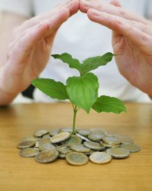 metas de investimento